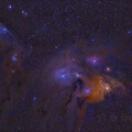 Rho Ophiuchi and Blue Horsehead