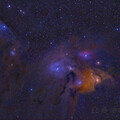 Rho Ophiuchi reprocessed