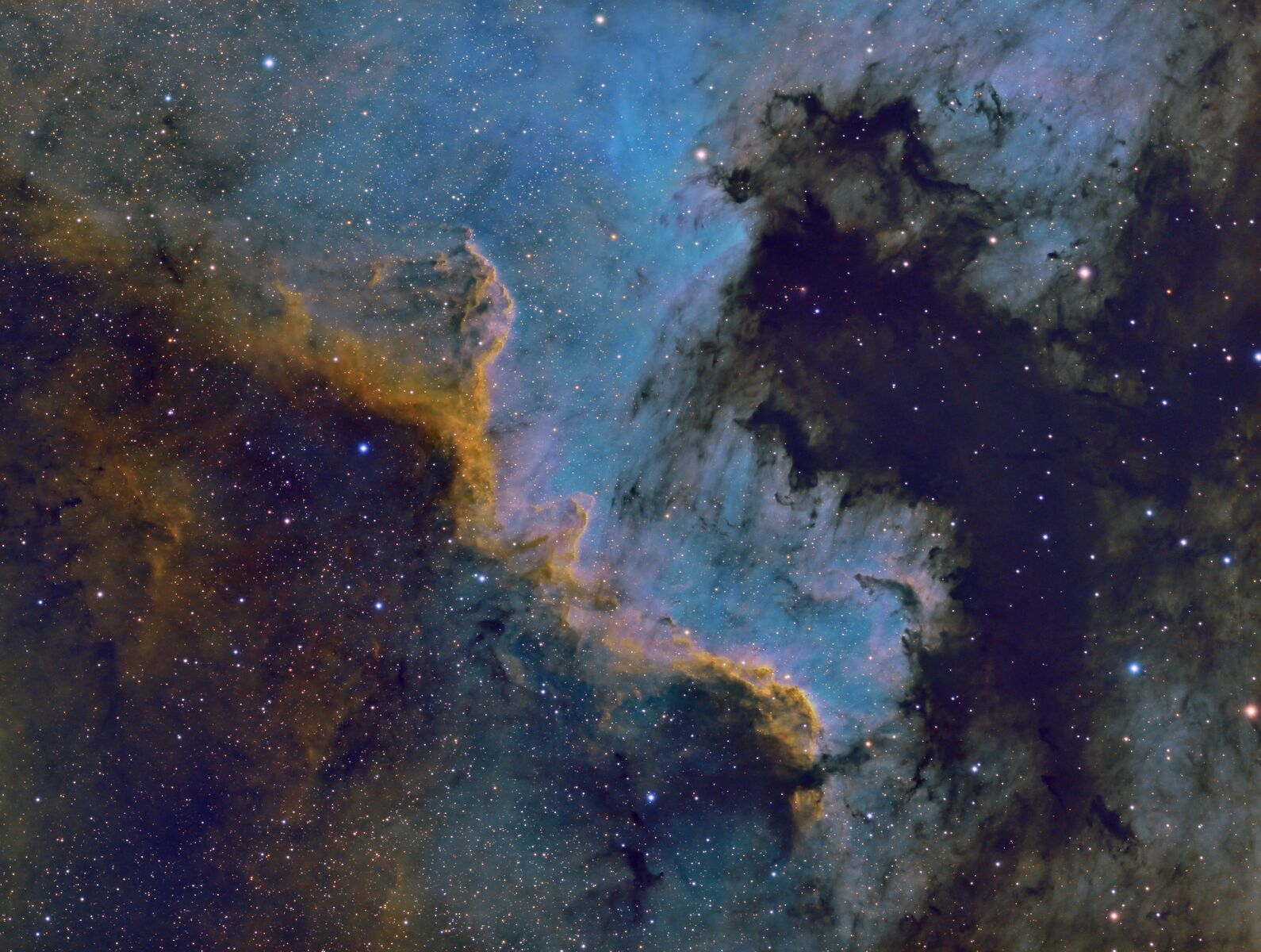 NGC7000LSHO