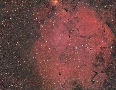 IC1396WF SMI