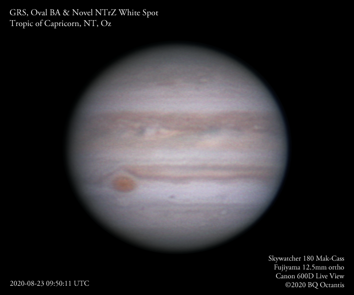 Jupiter, GRS, Oval BA, Novel NTrZ White Spot 2020-08-23