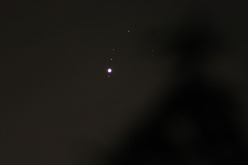 Jupiter near trees