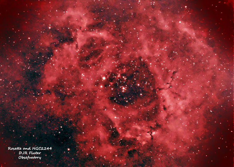 Rosette and NGC2244