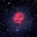 IC 5164, Cocoon Nebula