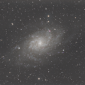 M33 - Triangulum Galaxy (First Pass)