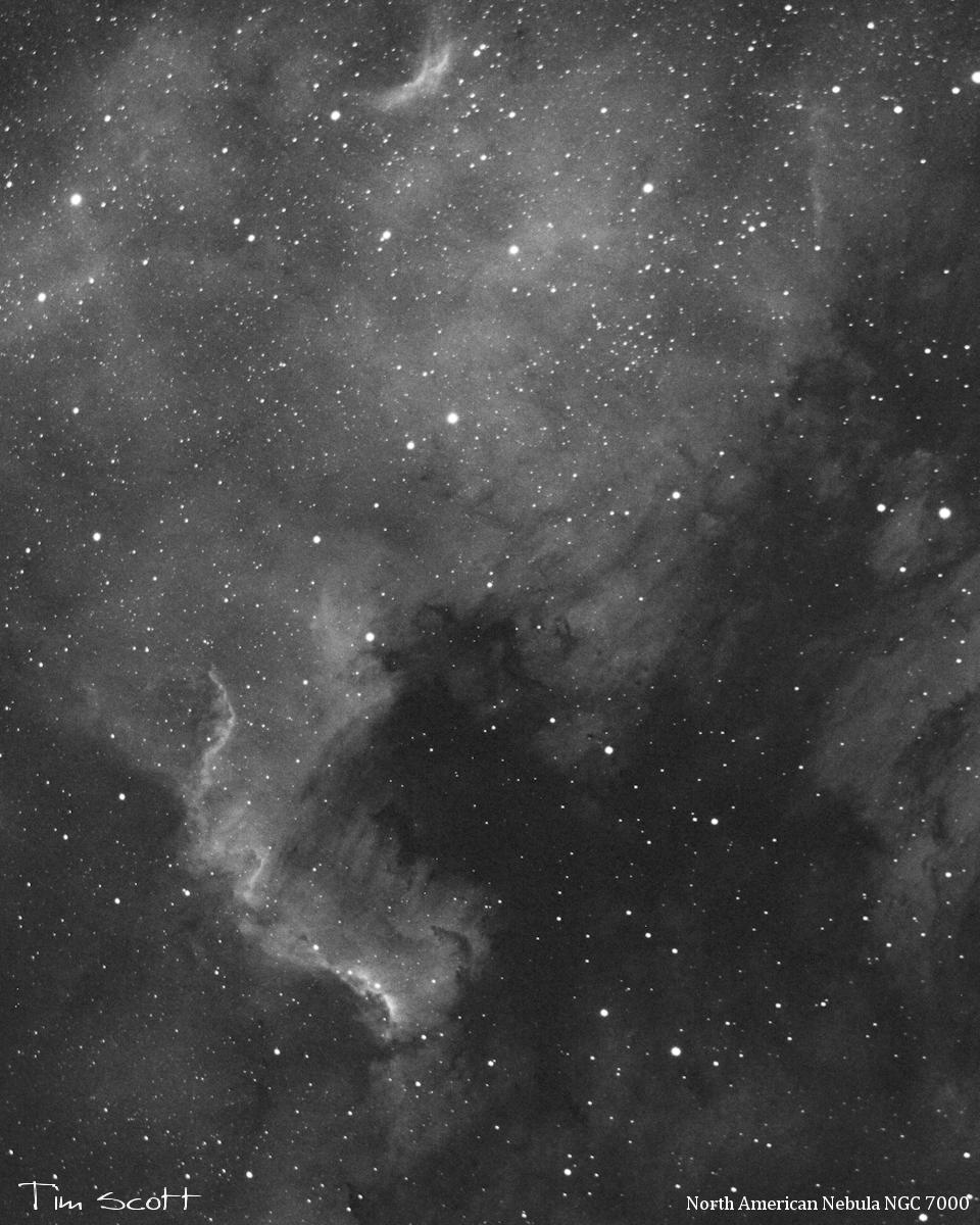N. Amr. Nebula, NGC7000
