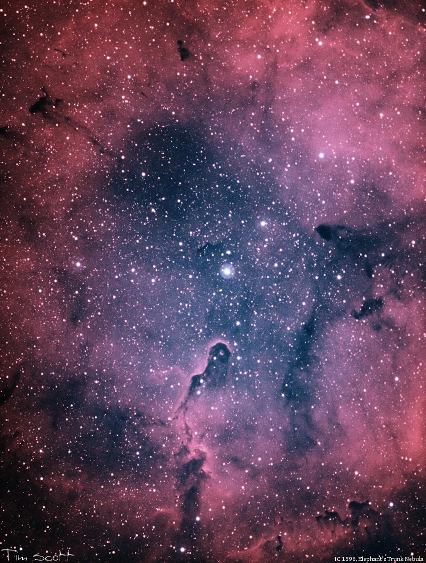 IC1396 111519