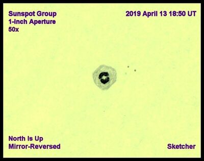 Sunspots 1 inch 50x April 13 2019 Sketcher 5
