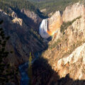 Lower Falls from Artist Point - YNP