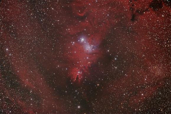 NGC2264 - Christmas Tree Cluster/Cone Nebula