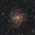 Hidden Galaxy (IC 342)