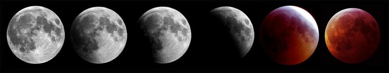 2019_lunar_eclipse_small copy.jpg
