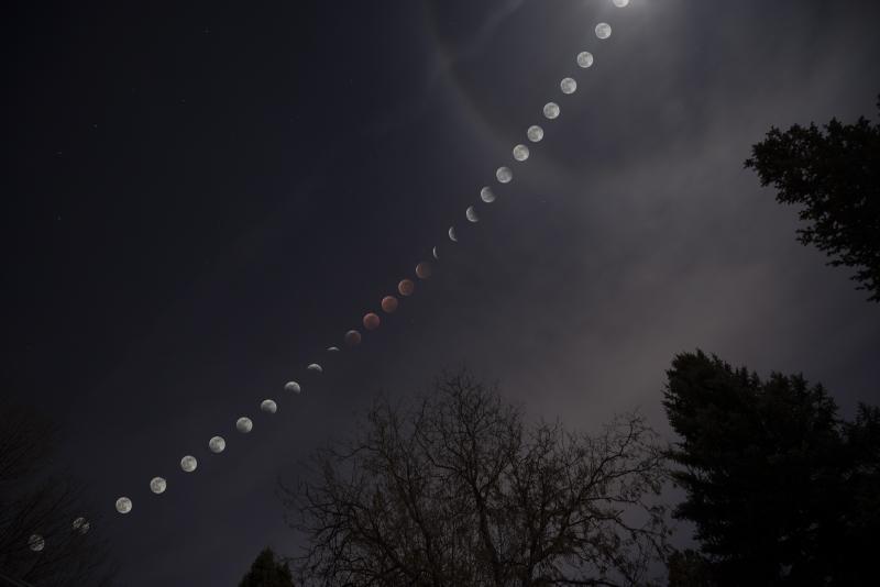 LunarEclipse_20jan19.jpg