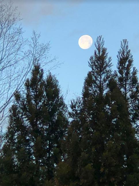 Moon 1-12-20 805AM.JPG