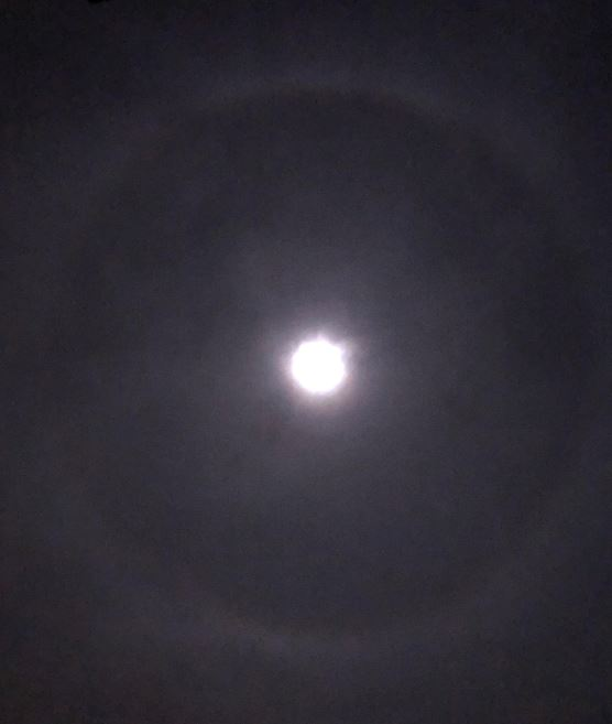 Halo Moon 1-12-20 4-16AM-sm.JPG