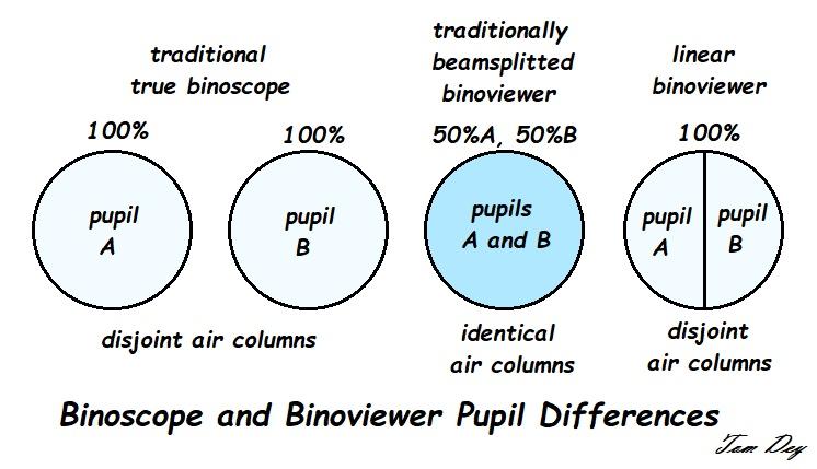 53 binoscope binoviewer pupil differences.jpg