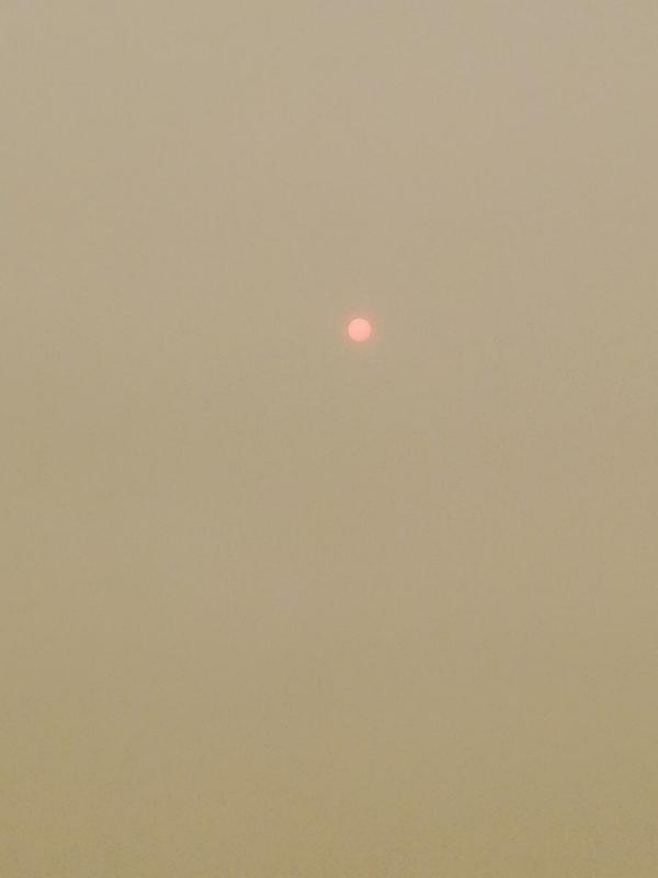 Disconcerting Sun..jpg