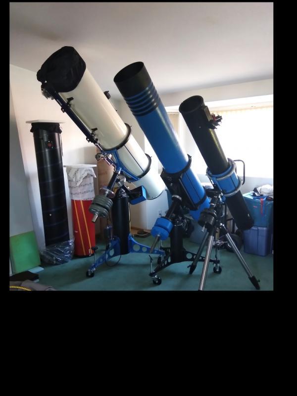 3 long Newtonians sm.jpg