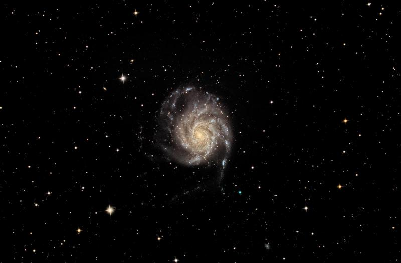 M101SCO2.jpg