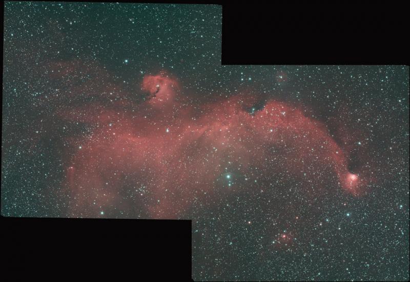 IC2711_Seagull_mosaic_v1.jpg