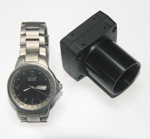 Chameleon watch compare.jpg