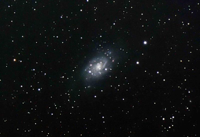 NGC2403-180S X 10_filtereda.jpg