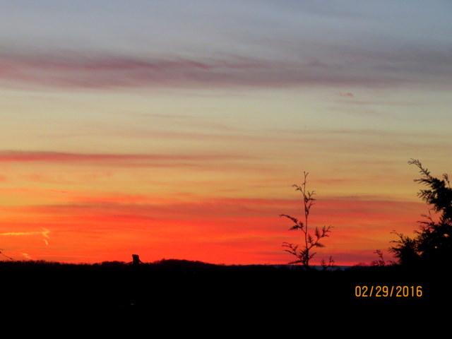 6 Sunset 2-29-16 IMG_0230 CN 640.JPG
