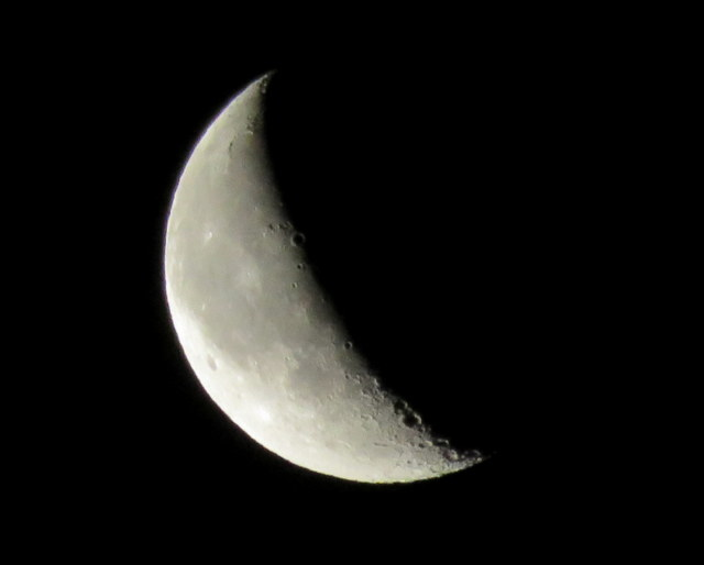 red crescent moon today - photo #44