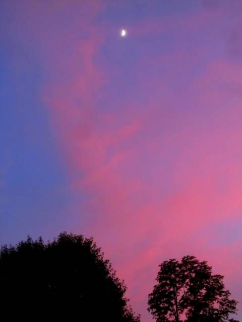 5 Sunset 2-15-16 IMG_4632 CN 640.JPG