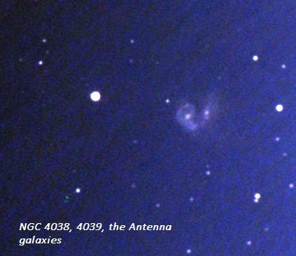 antenna gal 2 bin 28x8s.jpg