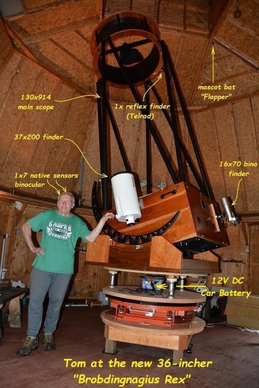 74 Toms modest telescope Brobdingnagius Rex.jpg