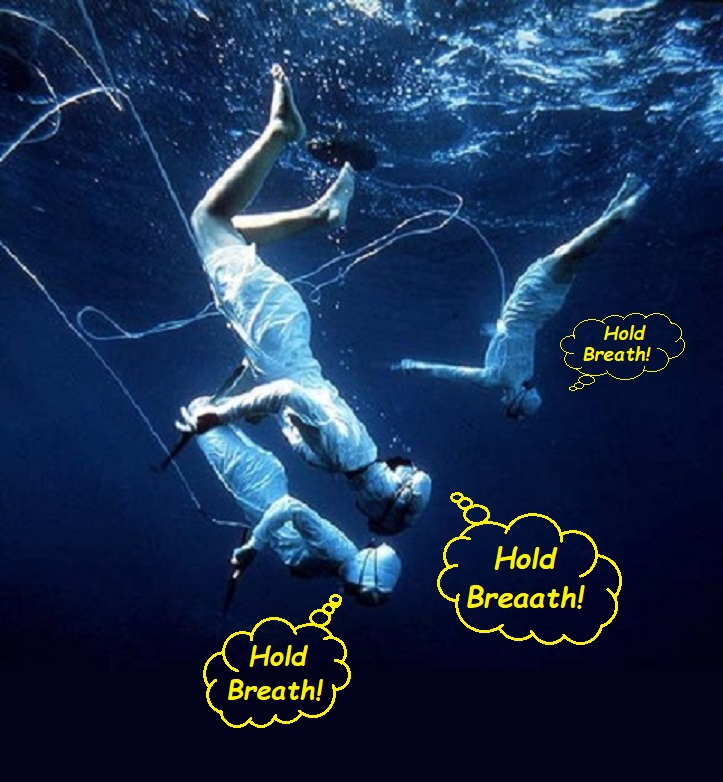 52 pearl divers holding breath.jpg