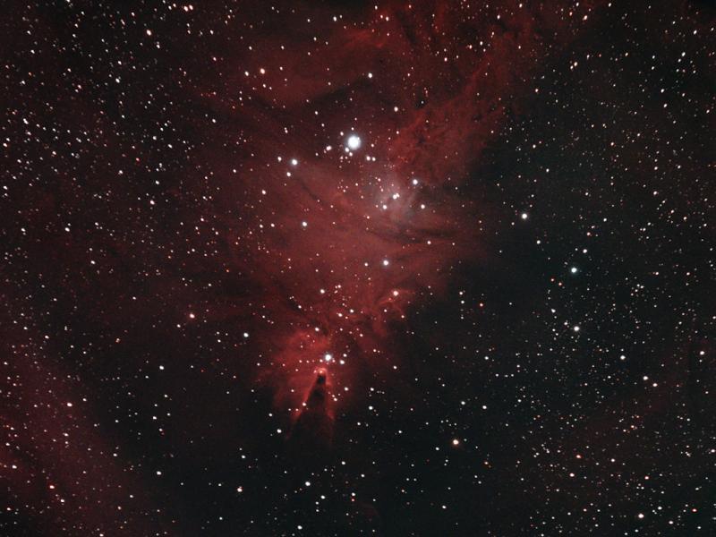 NGC 2264 (2-9-2019)-1j.jpg