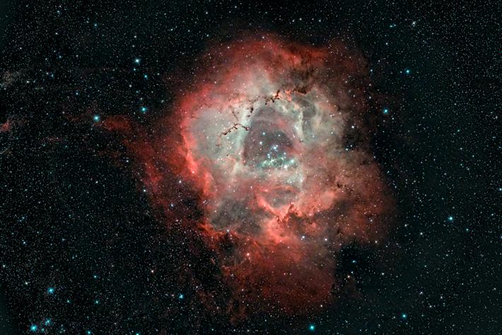 RosetteO_25-72sec200ImNewtQuadDanLlewellynCN.jpg