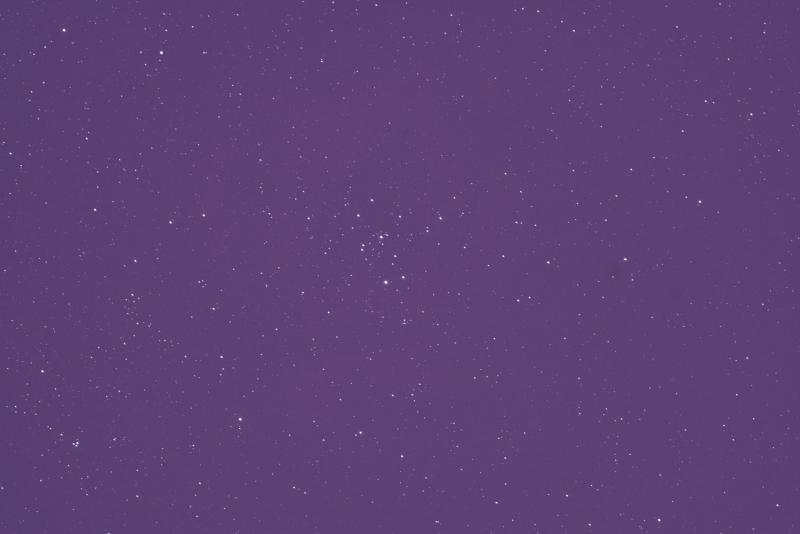Rosette sub.jpg