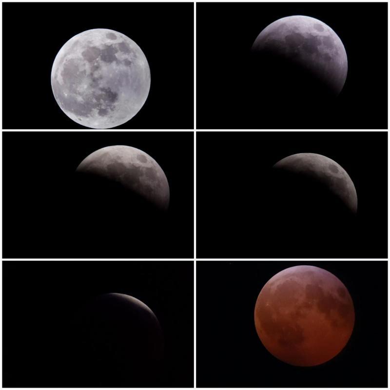 2019 lunar eclipse.jpg