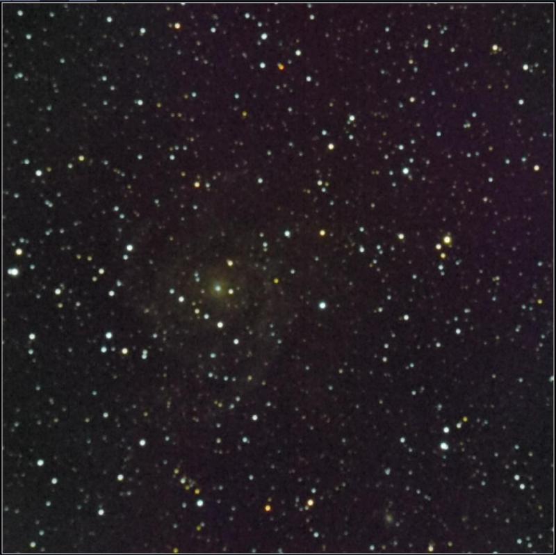 IC342 302 subs 20 sec 2 nights.jpeg