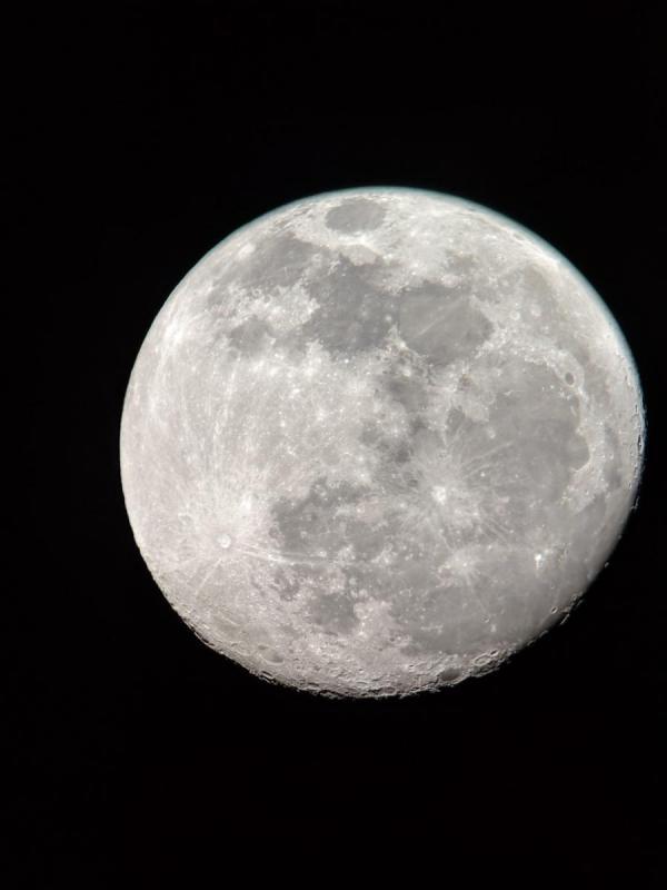 ortho luna.jpg