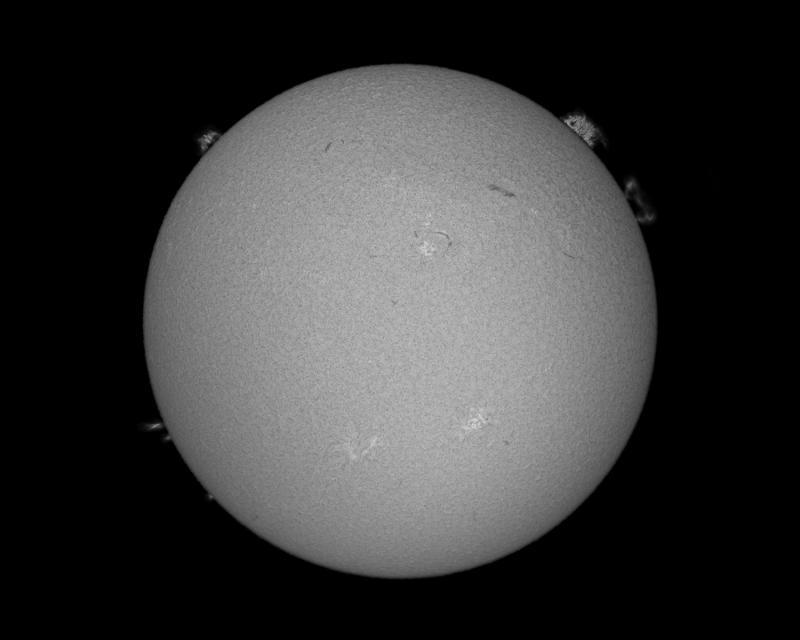 sun_full_disk_nat_comp_bw_web_2.23.21.jpg