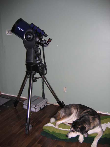 871648-Catanddog2.jpg