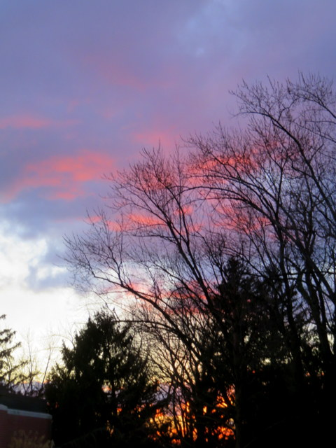 Sunset 3-3-17 IMG_0032-001.JPG