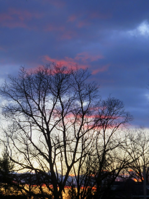 Sunset 3-3-17 IMG_0034-001.JPG