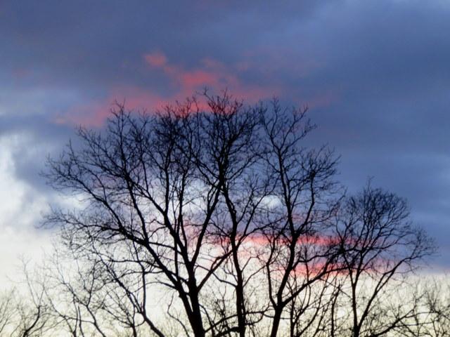 Sunset 3-3-17 IMG_0036-001.JPG