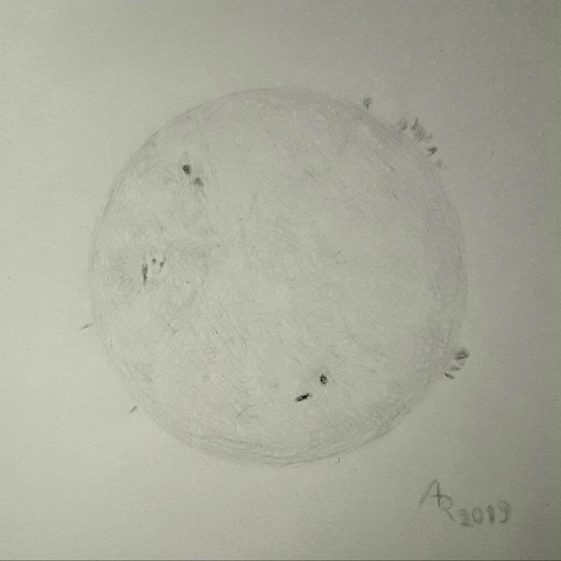 20190321_Silverpoint_H_alpha_Sun_with_AR_2736_small.JPG