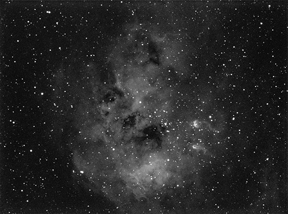 tadpole ic410 in Ha jpg.png