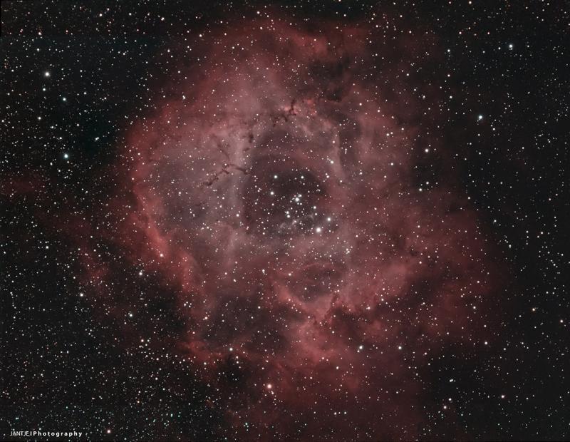 NGC 2244 - Rosette Nebula_Forum_small.jpg