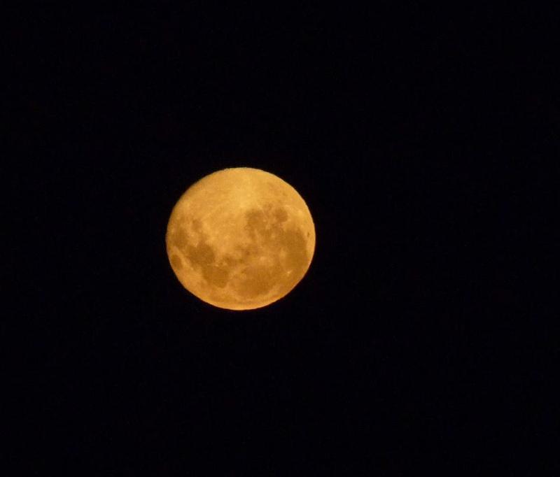Moon_Antarctic.JPG