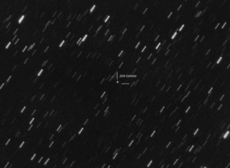 204 Callisto.jpg