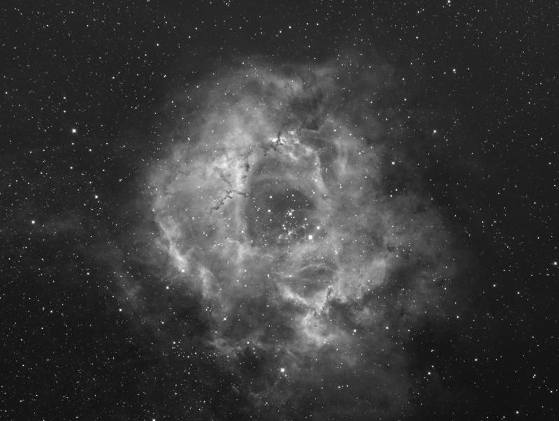 NGC2237-Ha-Cal-Sigma-CS-crop-LogStr-3x3.jpg