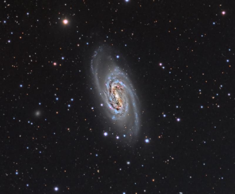 6454600-NGC2903_LRGB_24hrs_20140404_Small.jpg